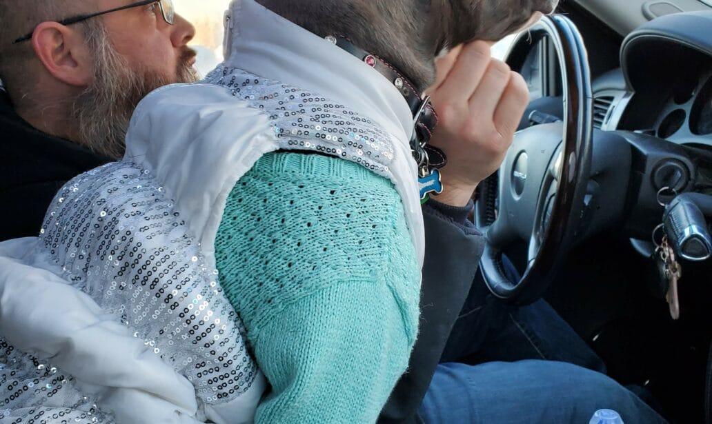 Atlas in Sweater