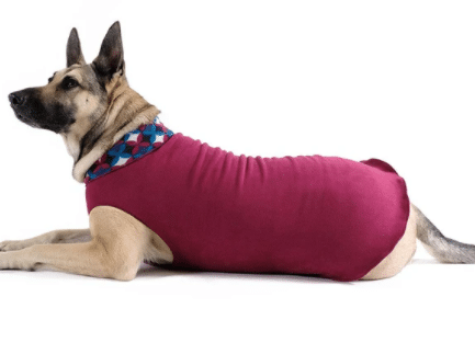 Big Dog Coat