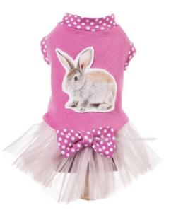 Rabbit Dog Dress