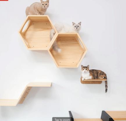 Wall mounted cat shelves