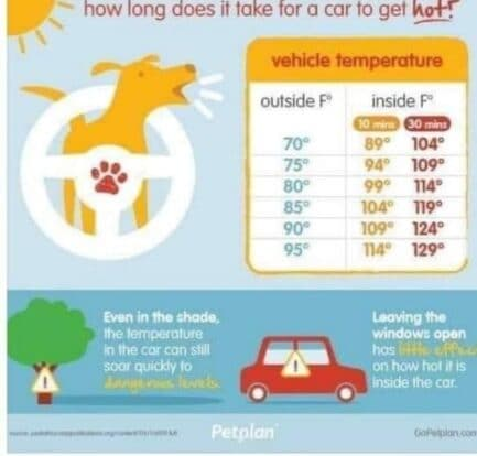Temps in Vehicles